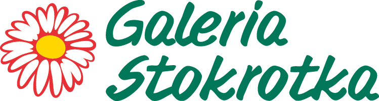 Galeria Stokrotka